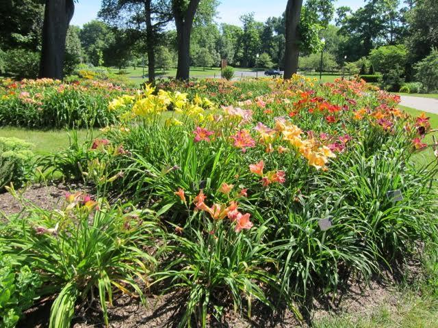 Ohio Hybridizers' Garden at Franklin Park Conservatory